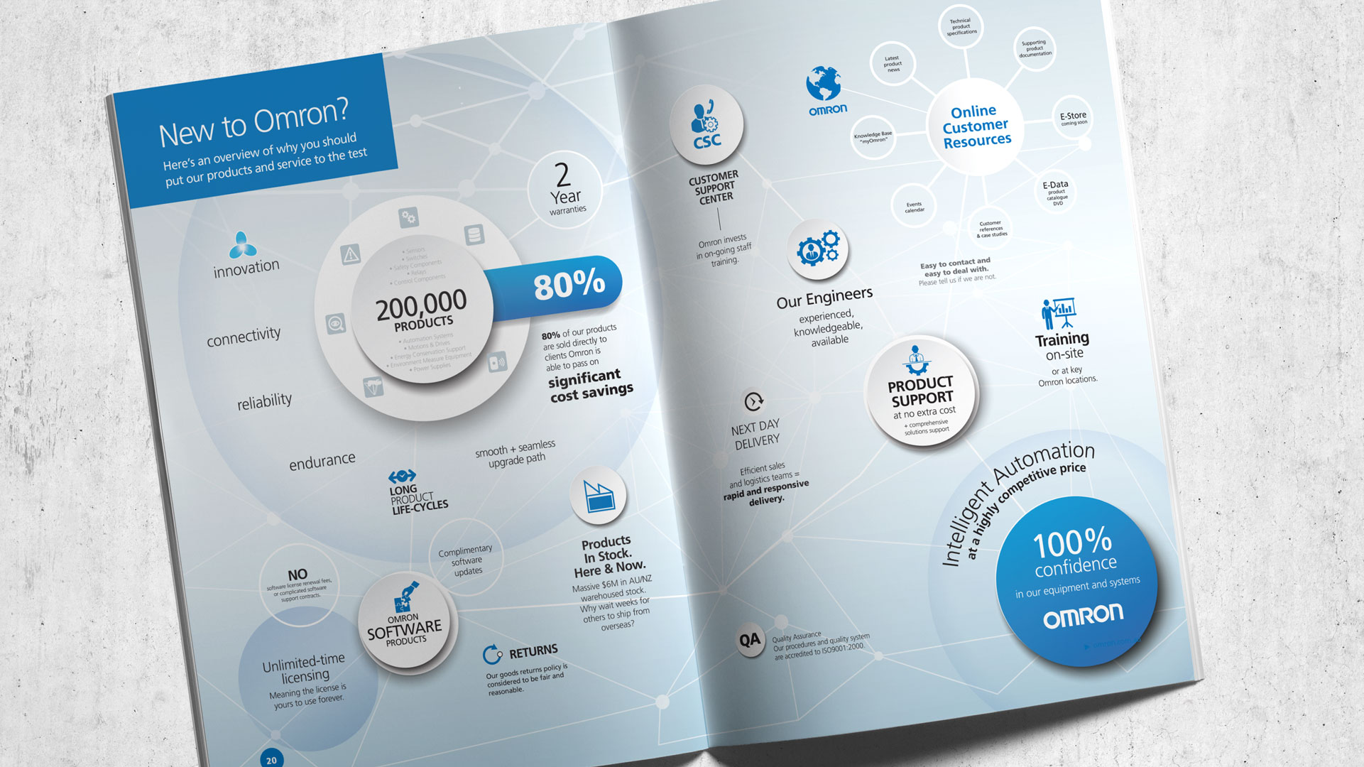 Business Infographic for Company Brochure
